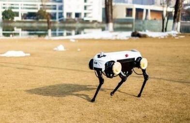 浙大发四足机器人 稳健地爬陡坡踏积雪挨了重重一踢也不倒